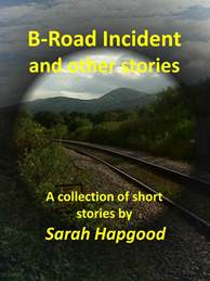 Cover of Sarah Hapgood's  B-Road Incident and other stories