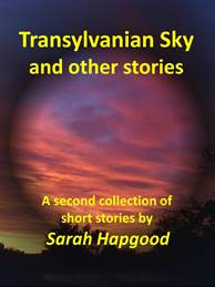 Cover of Sarah Hapgood's 
